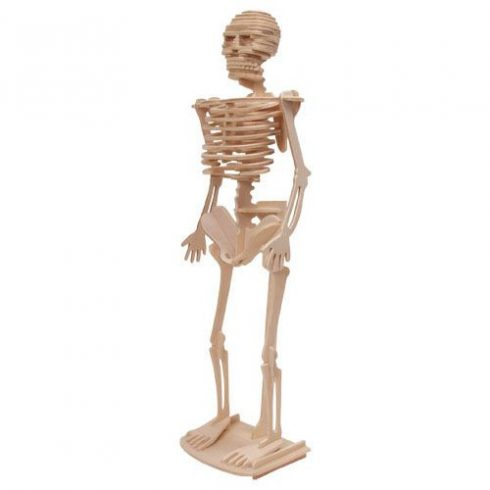 3D-s fa puzzle - Csontváz