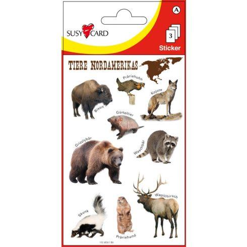 Írószerek - Iskolaszerek - Matricák - É-Amerika állatok