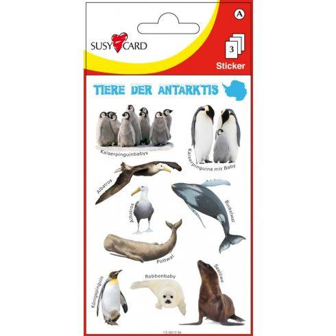 Matricák - Antarktisz állatai