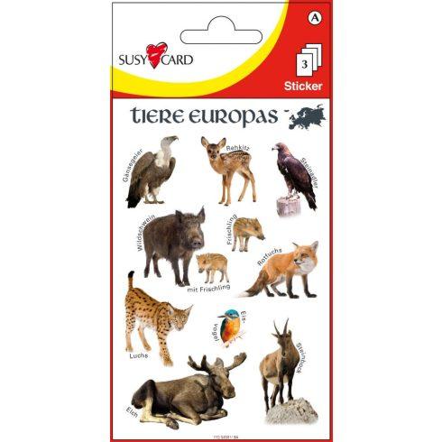 Matricák - Európa állatai matrica készlet