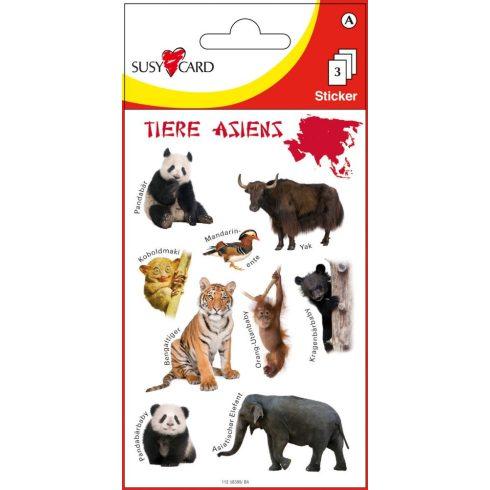Írószerek - Iskolaszerek - Matricák - Ázsia állatai