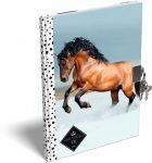 Füzetek - Füzet borítók - Emlékkönyv keményfedeles A5 Geo Horse