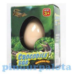 Állat figurák - Kikelő krokodil tojás