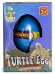 Állat figurák - Kikelő teknős tojás