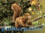 Kesztyű bábok - Plüss kesztyűbáb vörös mókus
