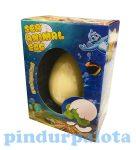 Vízben tojásból kikelő állatkák - Tengeri tojás