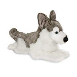 Plüssök - Husky kutya
