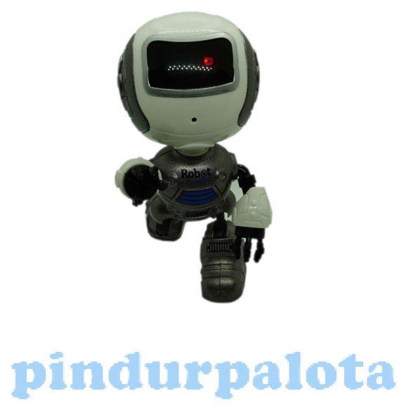 Interaktív játékok gyerekeknek - Visszabeszélő robot öntött figura többféle