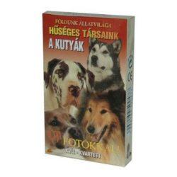 Kártya játékok - Mesekártyák - Memória kártyák - Klasszikus kártyapaklik - Kártyajáték Kutyák