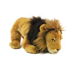 Plüssök állatok - Hím oroszlán