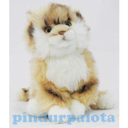 Plüss állatok - Bézs ülő cica