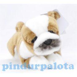 Plüss állatok - Kutya - Bulldog