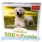 Junior puzzle - Animal Collection Fehérszőrű Golden Retriever 500db-os puzzle