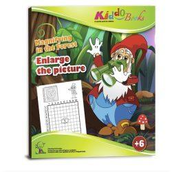 Iskola előkészítő foglalkoztató füzetek - Nagyítsd fel a képet foglalkoztató Kiddo Books