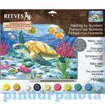 Rajzkészség fejlesztő játékok - Reeves festés számok után Tengeri teknős