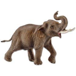 Állat figurák - Ázsiai Elefántbika Schleich
