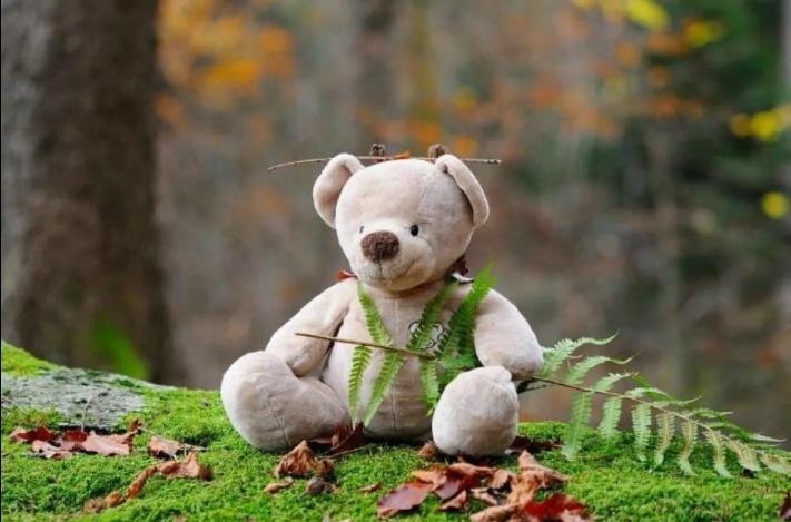 Környezetvédelemről és újrahasznosításról gyerekeknek
